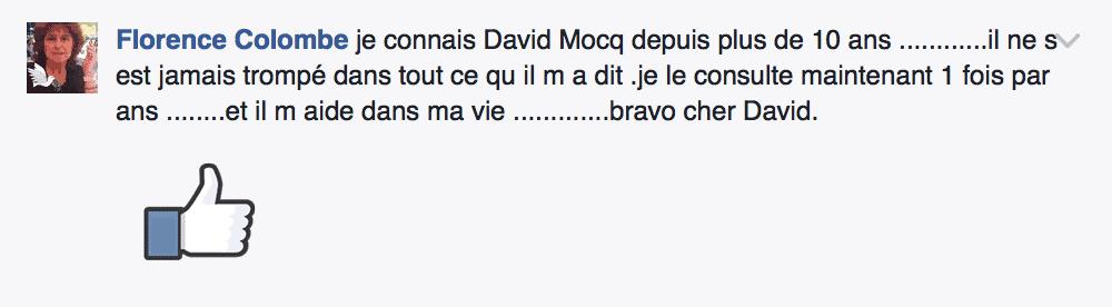 Avis David Mocq - Facebook 2