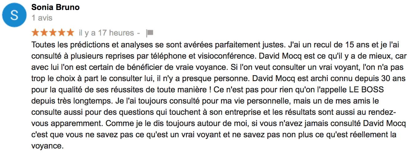 David Mocq Avis de Sonia Bruno