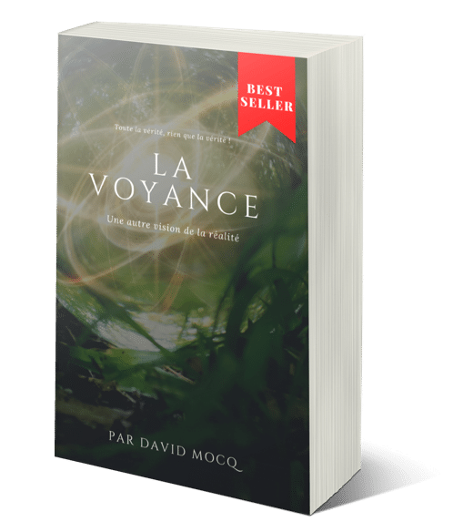 eBook La voyance par David Mocq, un best-seller 3D
